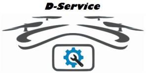 D-Service - logo