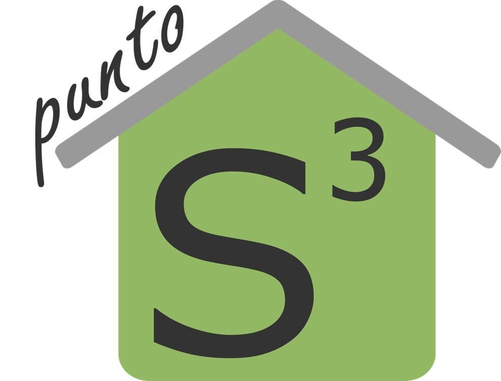 Punto S3-Logo