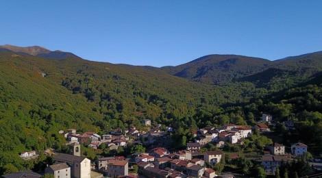 COOPERATIVE FORESTALI:  PER L'ALLEANZA DELLE COOPERATIVE UN PASSO IN AVANTI